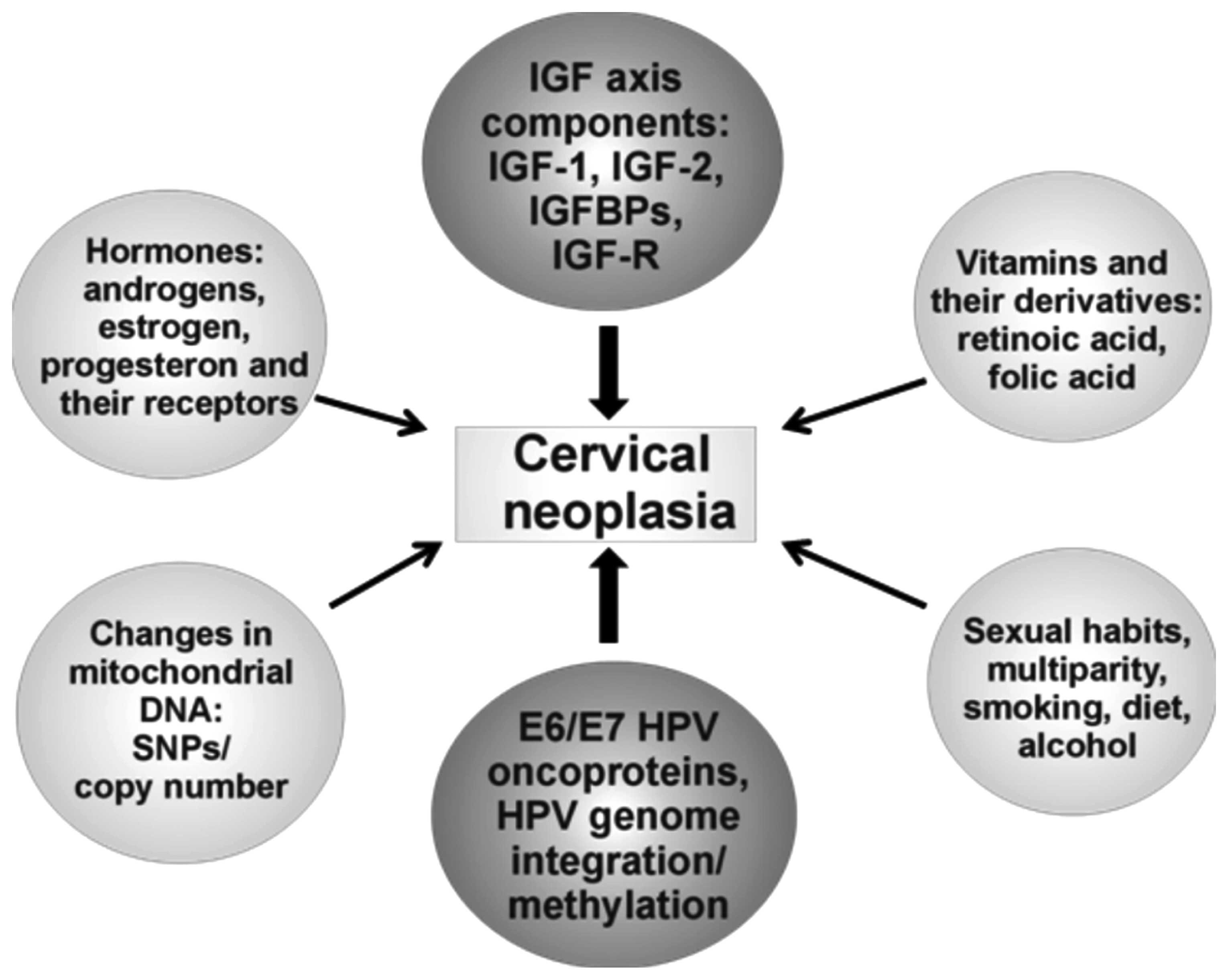 cervical cancer unrelated to hpv hpv en hombres garganta