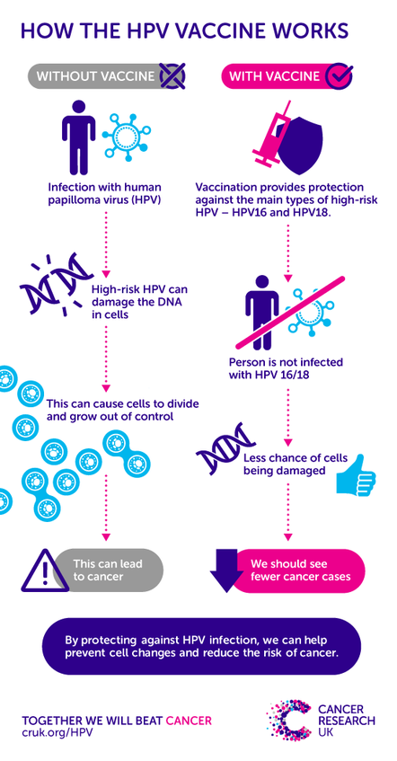 hpv medical research hpv duct tape