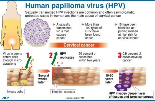High risk hpv cancer risk - Hpv type that causes cancer