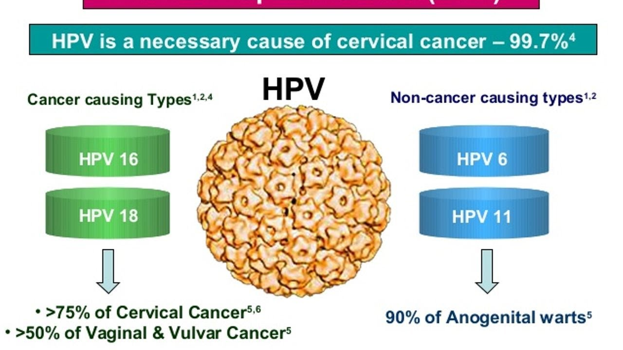 hpv to cervical cancer hpv topical cream