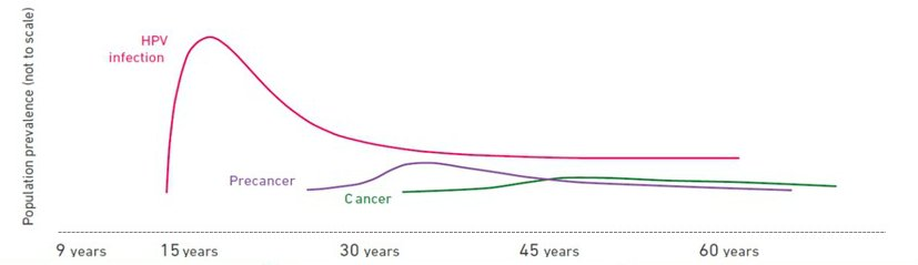 what causes hpv cervical cancer