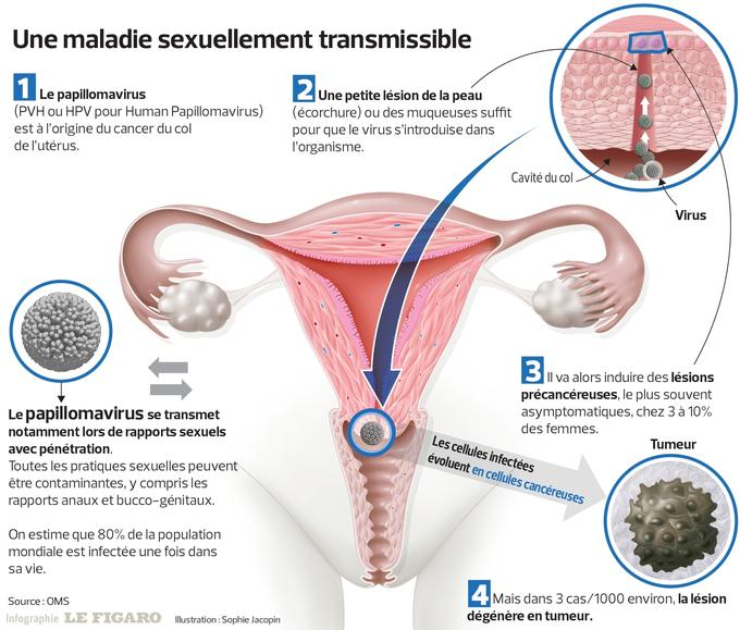 hpv et cancer du col cancer endocrine therapies